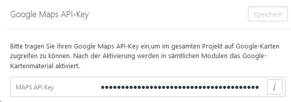Developer Google Maps Api on